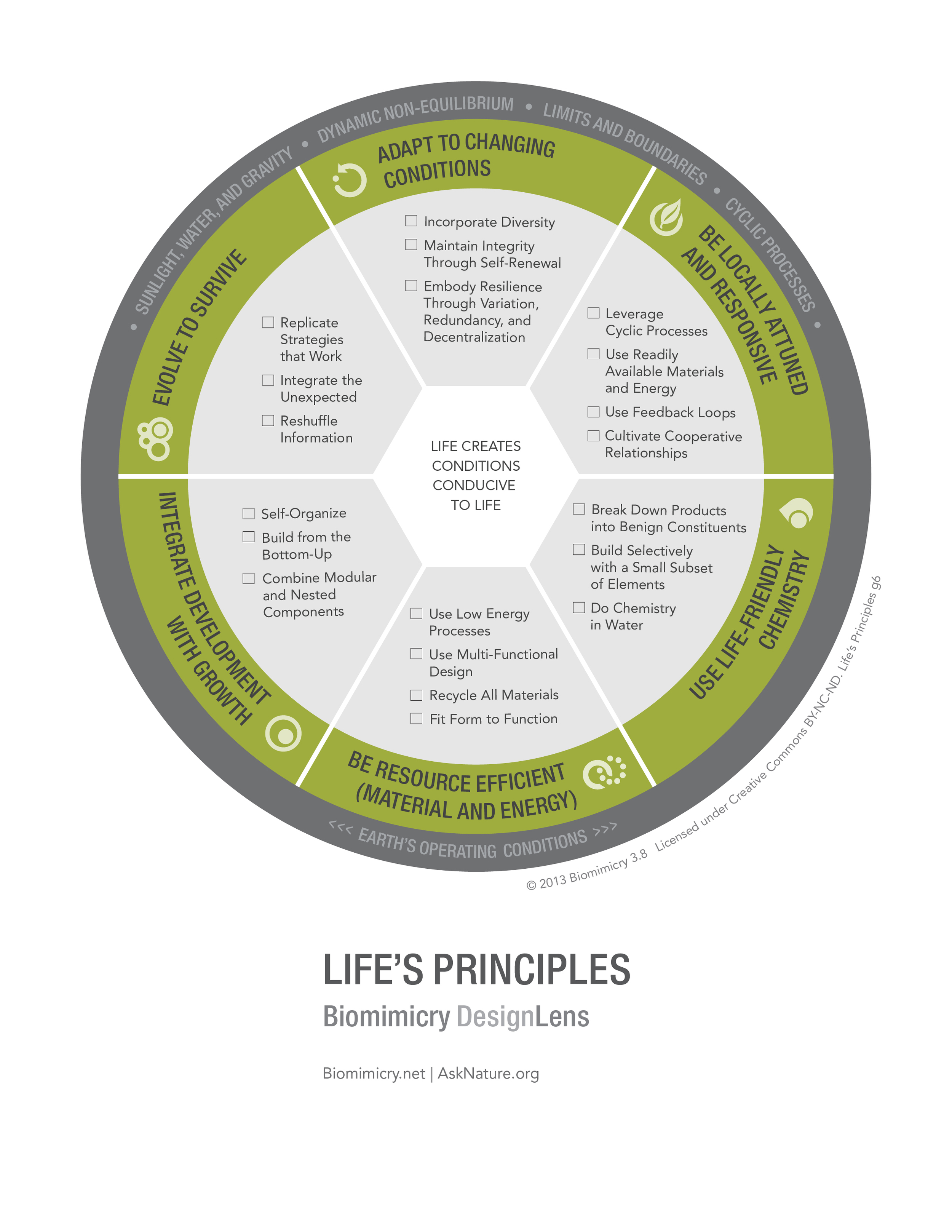 Biomimicry38_DesignLens_Lifes_Principles_WEB.jpg