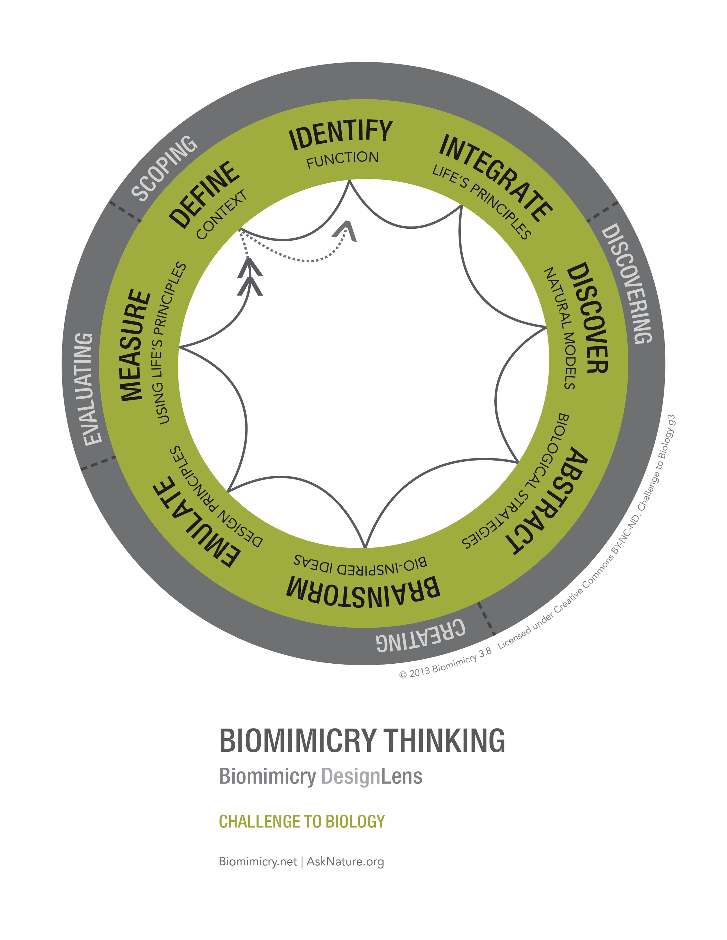 Biomimicry38_DesignLens_Challenge_to_Biology_WEB.jpg