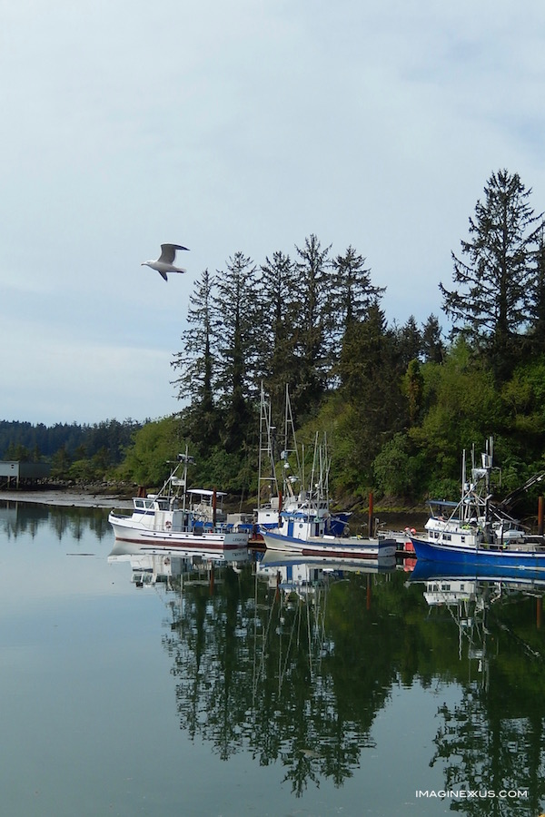Stroll Along Ilwaco Harbor