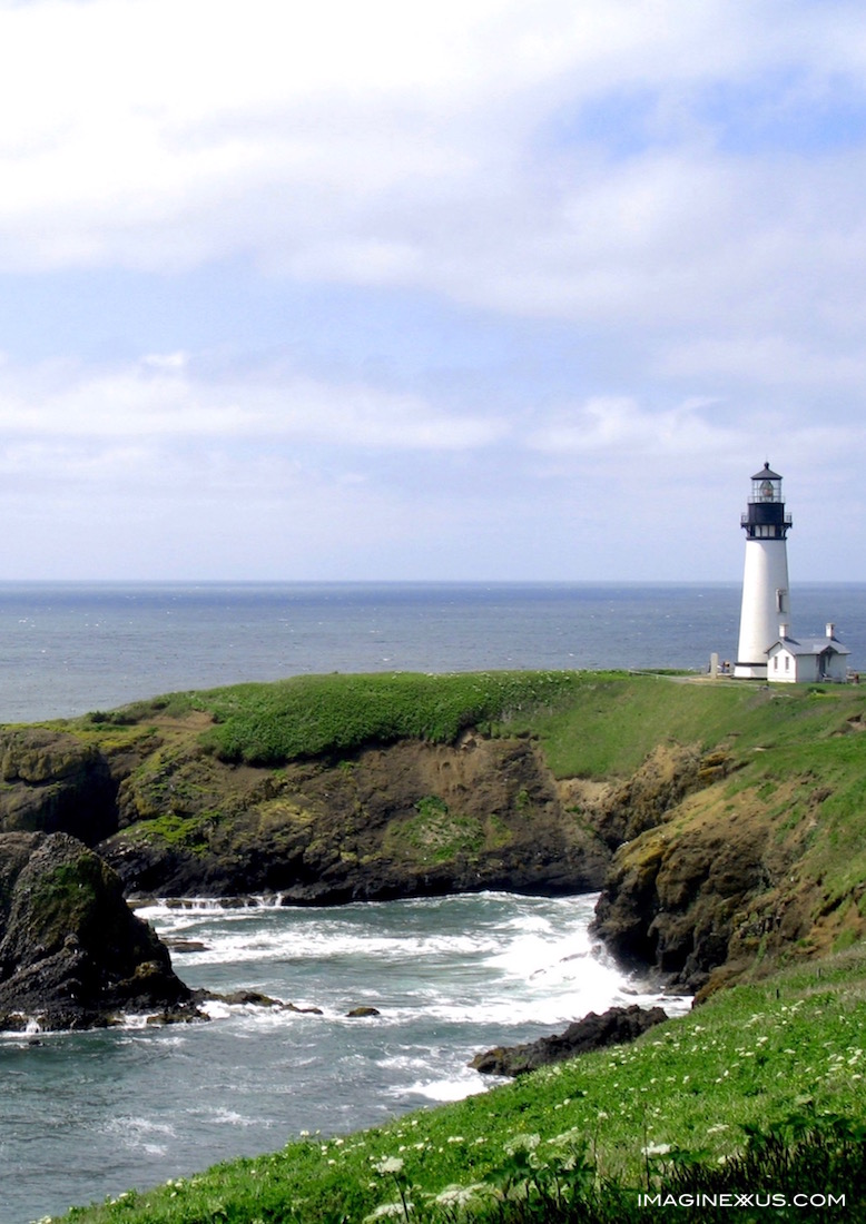 Yaquina Head's Quiet Beauty
