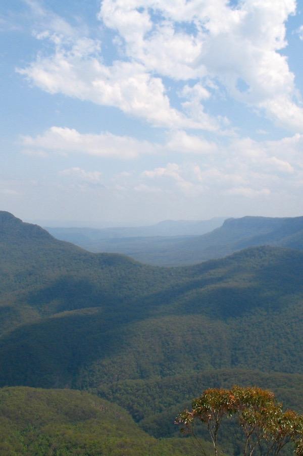 Blue Mountains- Vista 2.jpg