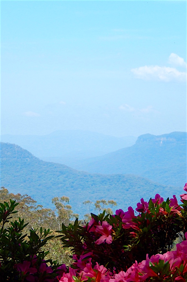 Blue Mountains-Leura Gardens.jpg