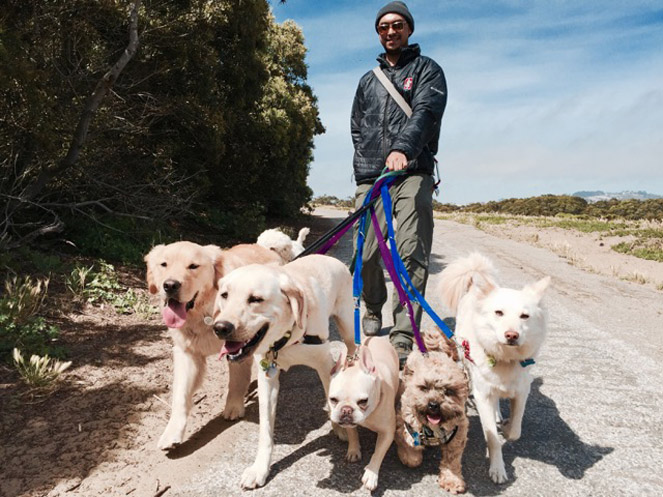 MICAH CASTRO  OWNER AND DOG WALKER  I am originally from Hawaii and am very happy to now call the Bay Area home. After over a decade in the Tour and Travel industry, I left the corporate world and sought to combine my passion for the outdoors and my love for dogs in a business I could be proud of. After countless hours of research, training and mentoring a professional dog walker emerged.