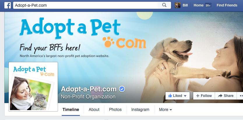 adoptapet_facebook.png