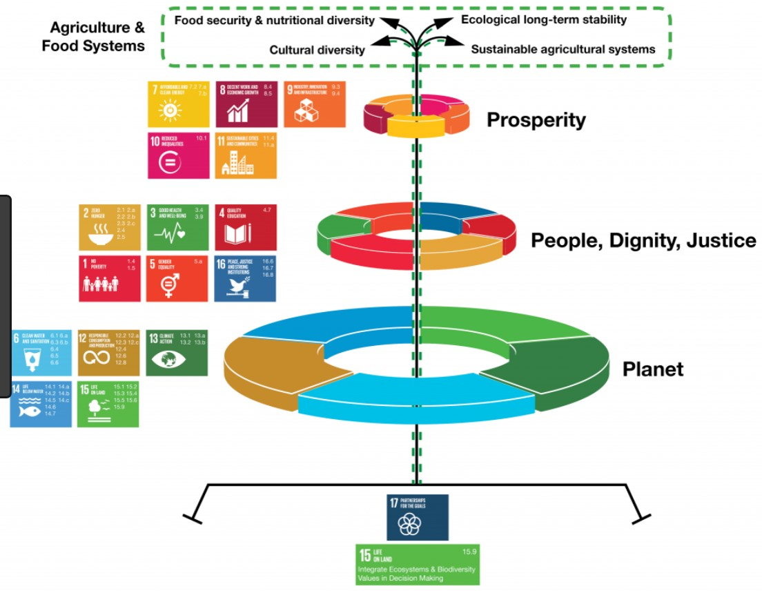 Agriculture Food System