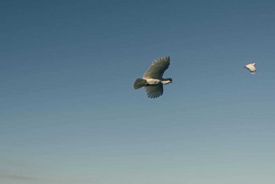 whitsunday-photography-013.jpg