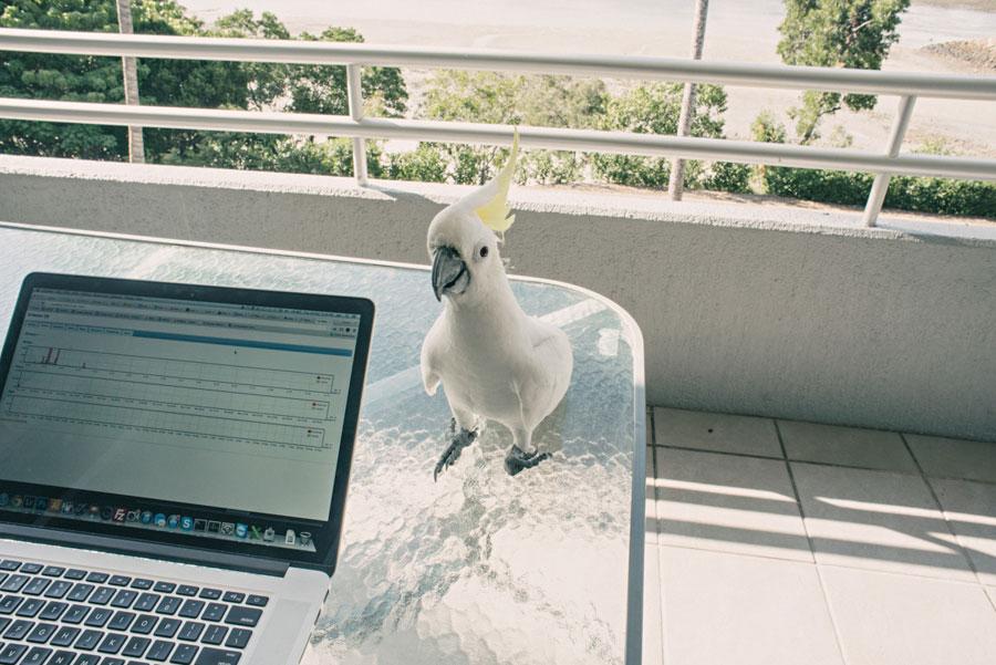 whitsunday-photography-019.jpg