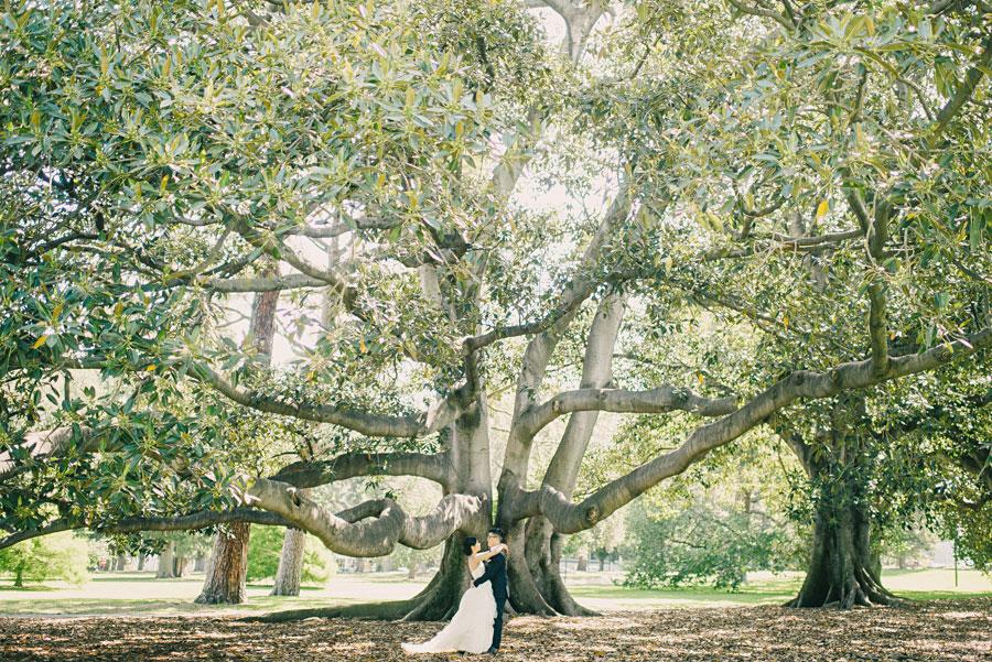 wedding-photography-melbourne-daniel-bilsborough-013.jpg