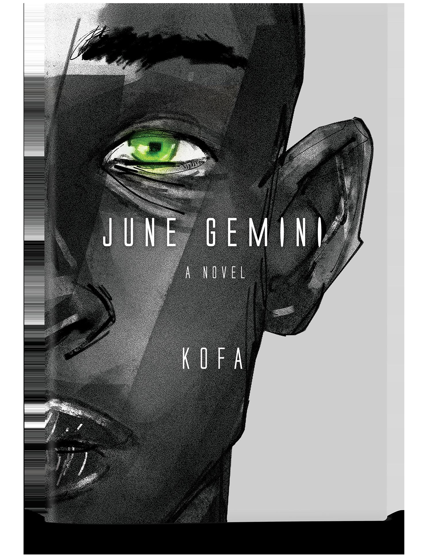 june_gemini_novel.png