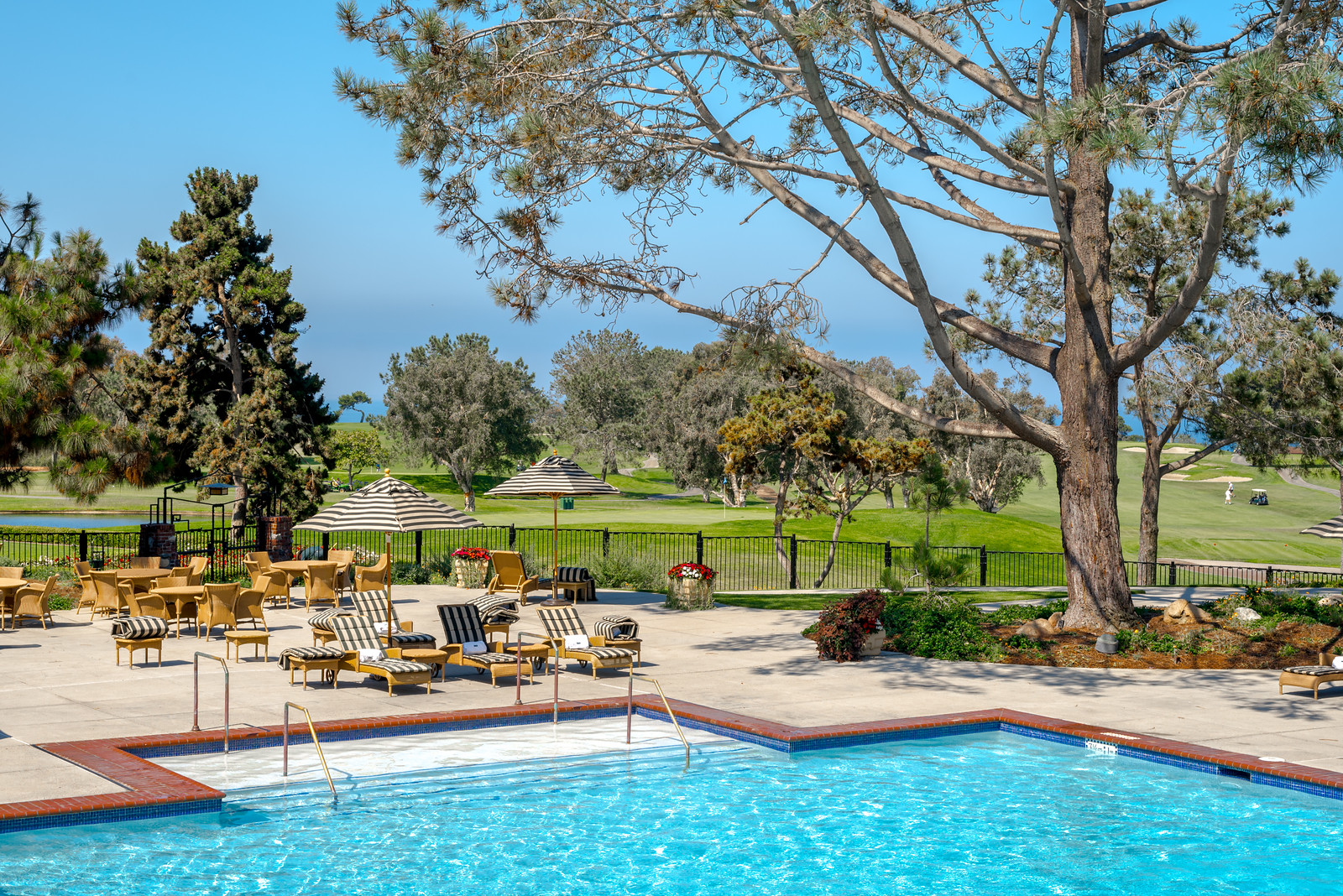 The pool at The Lodge at Torrey Pines in La Jolla