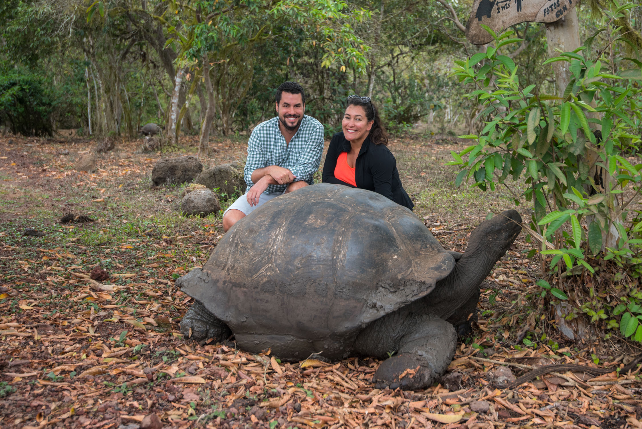 Chris and I posing with a Giant tortoise, who was more concerned about eating than taking a pic with us :)