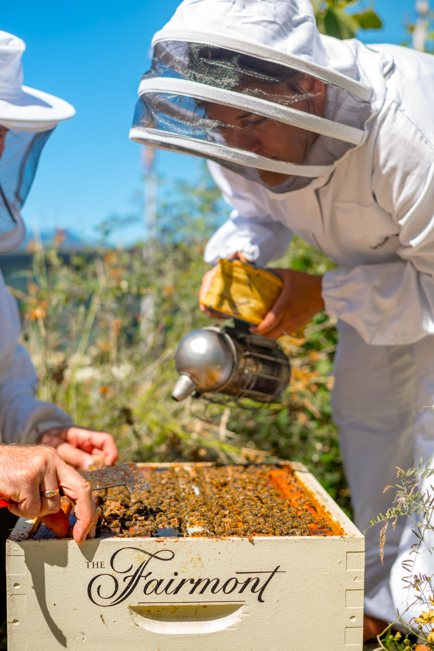Would not have thought we'd learn bee keeping in Vancouver!
