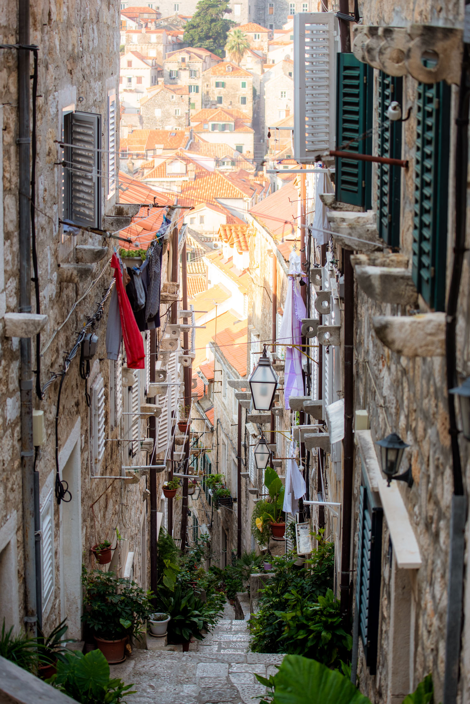 Dubrovnik-200-20180822.jpg