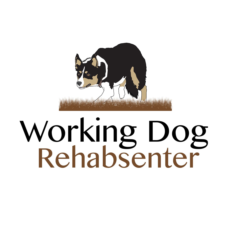 logo-logodesign-design-workingdog-rehabsenter.jpg
