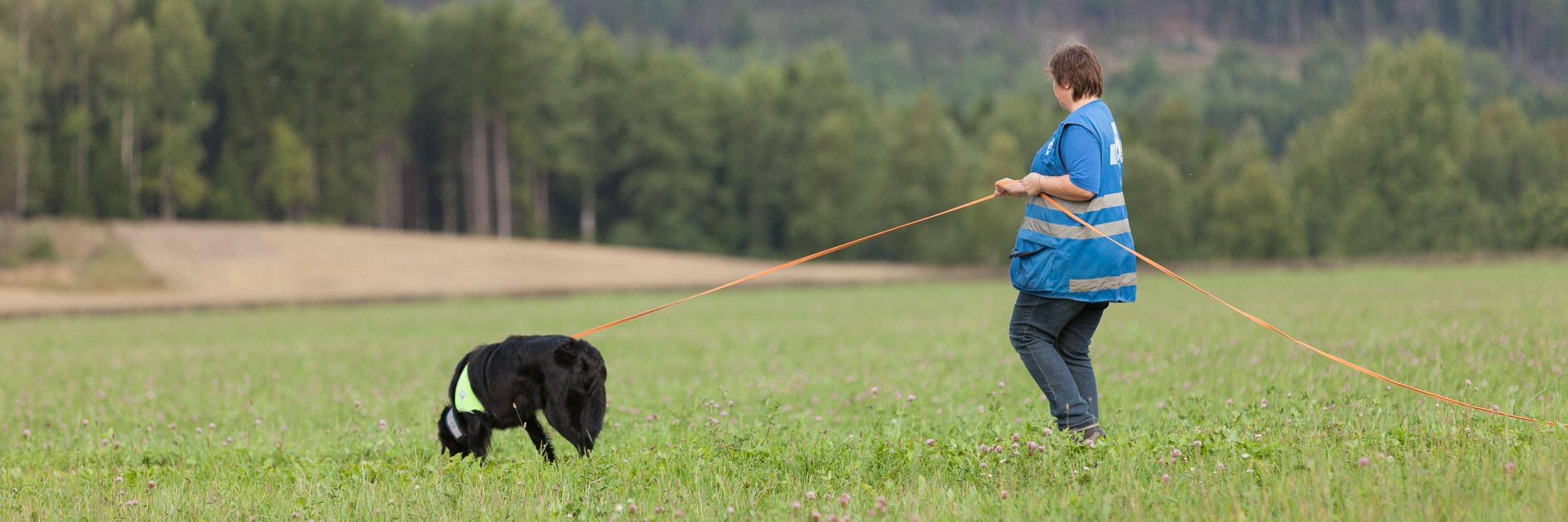 hundefotograf-hundefotografering-fotograf-sarpsborg-