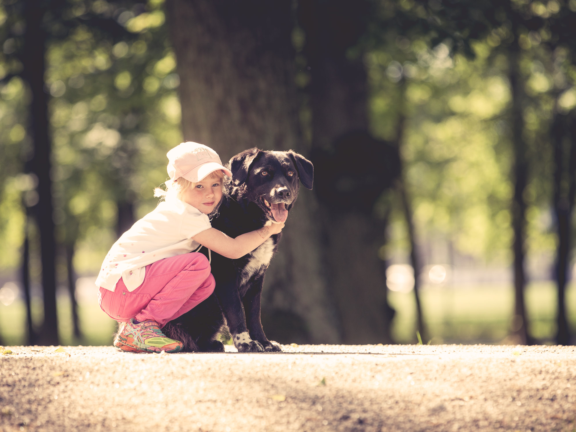 hund-hundefotograf-hundefotografering-fotograf-hodnedesign-pål-hodne--48.jpg