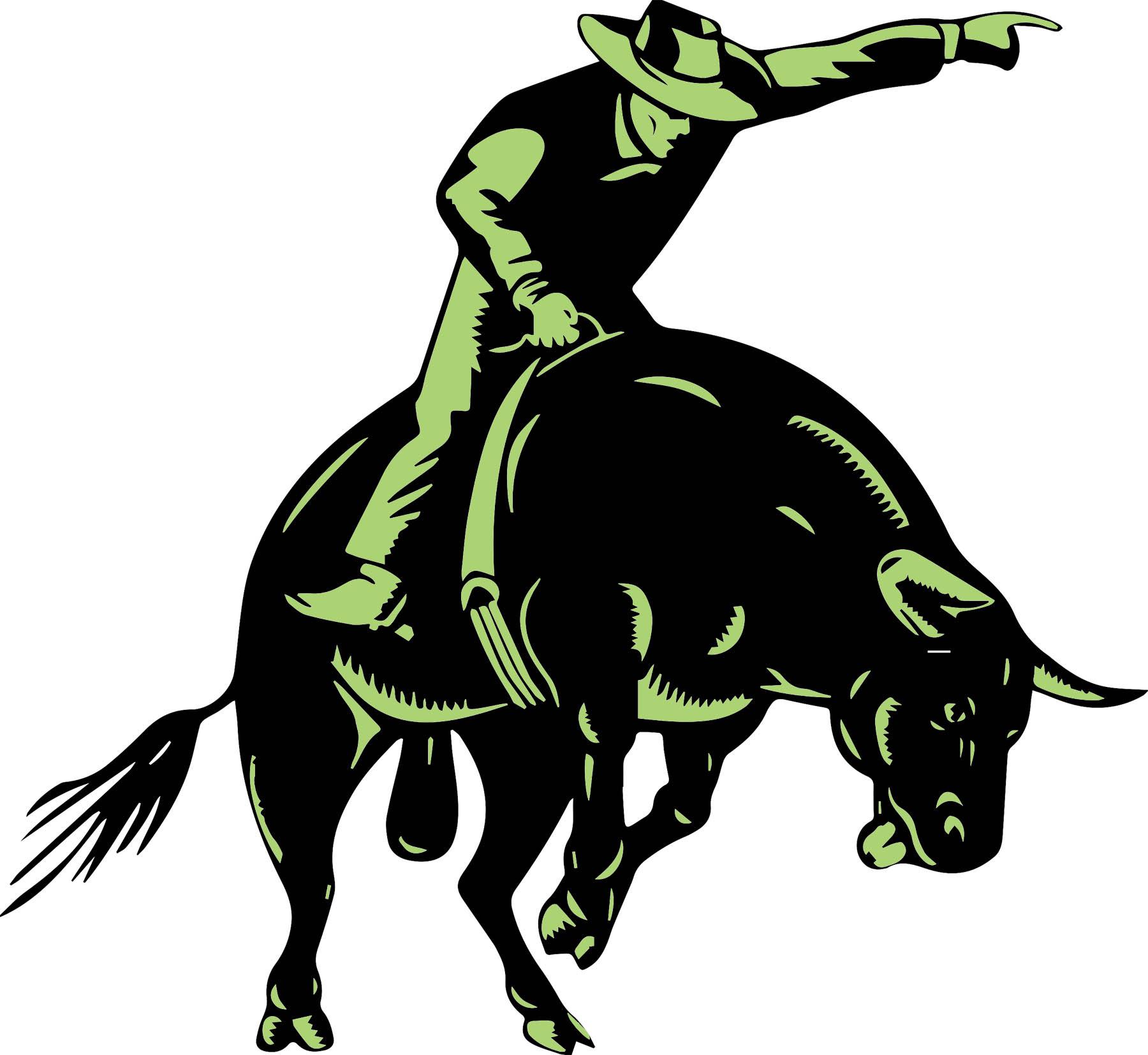 bull rider master.jpg