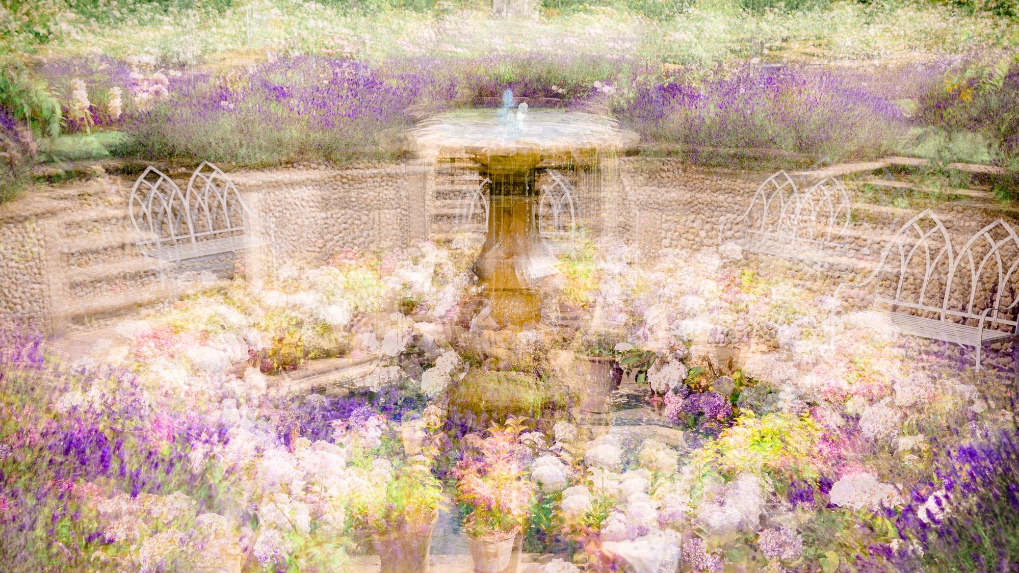 In an English Country Garden ( Norfolk)