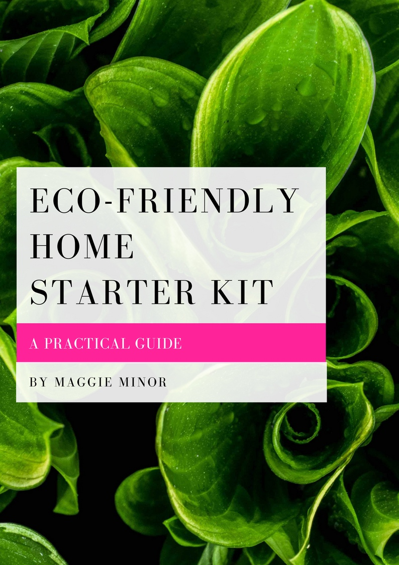 Eco Friendly Home Starter Kit.jpg