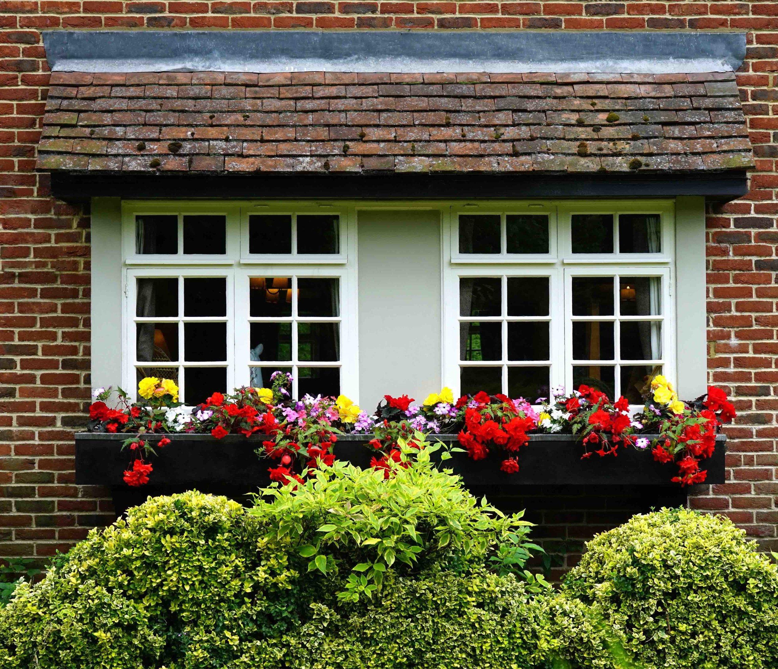 Windows with flowers.jpg