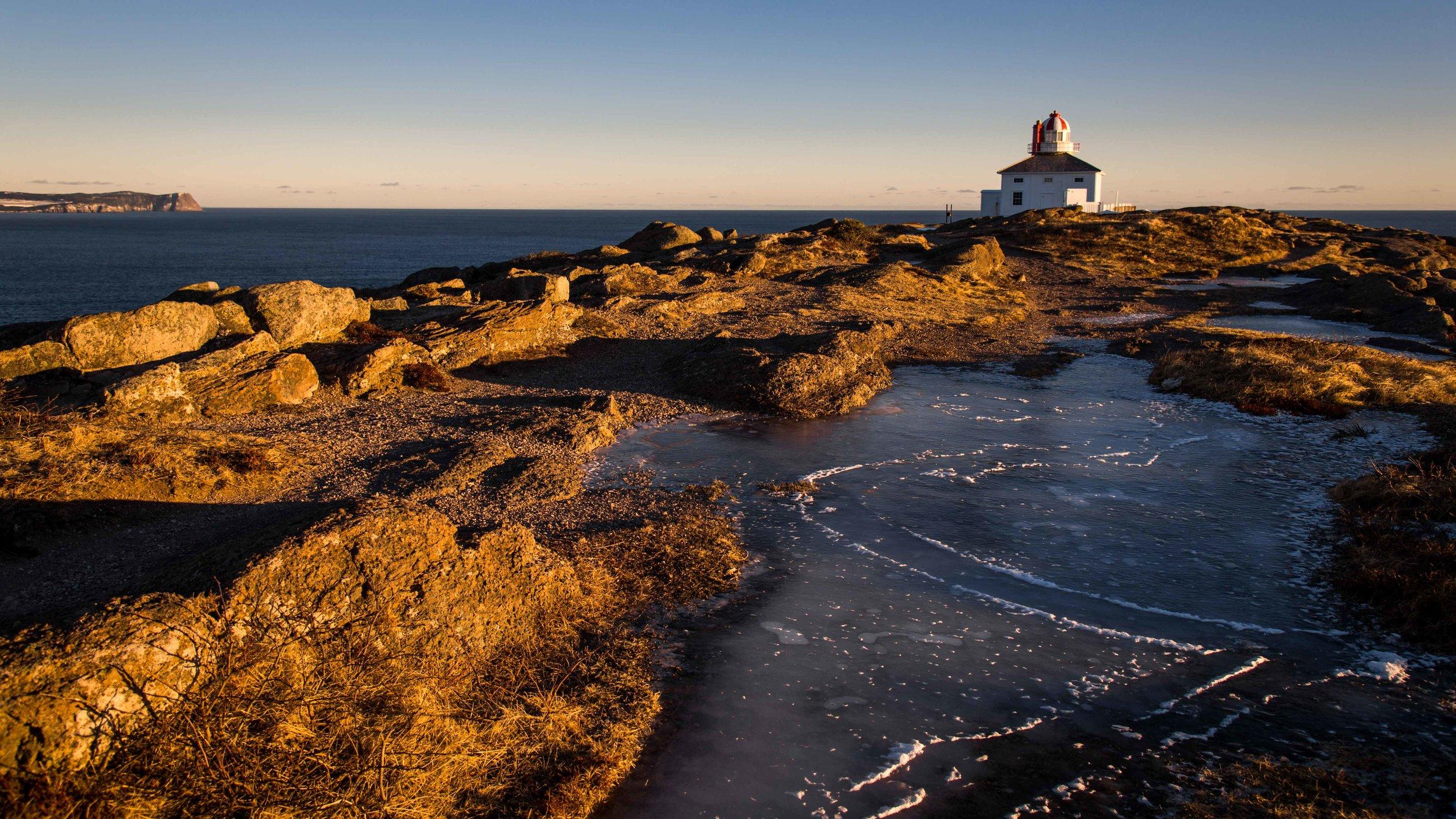 Feb 1 - Cape Spear-4.jpg