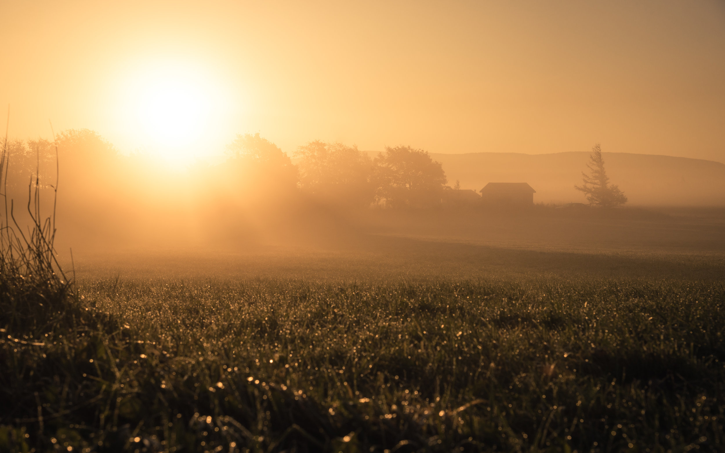 Oct 26 - Goulds Sunrise-2.jpg