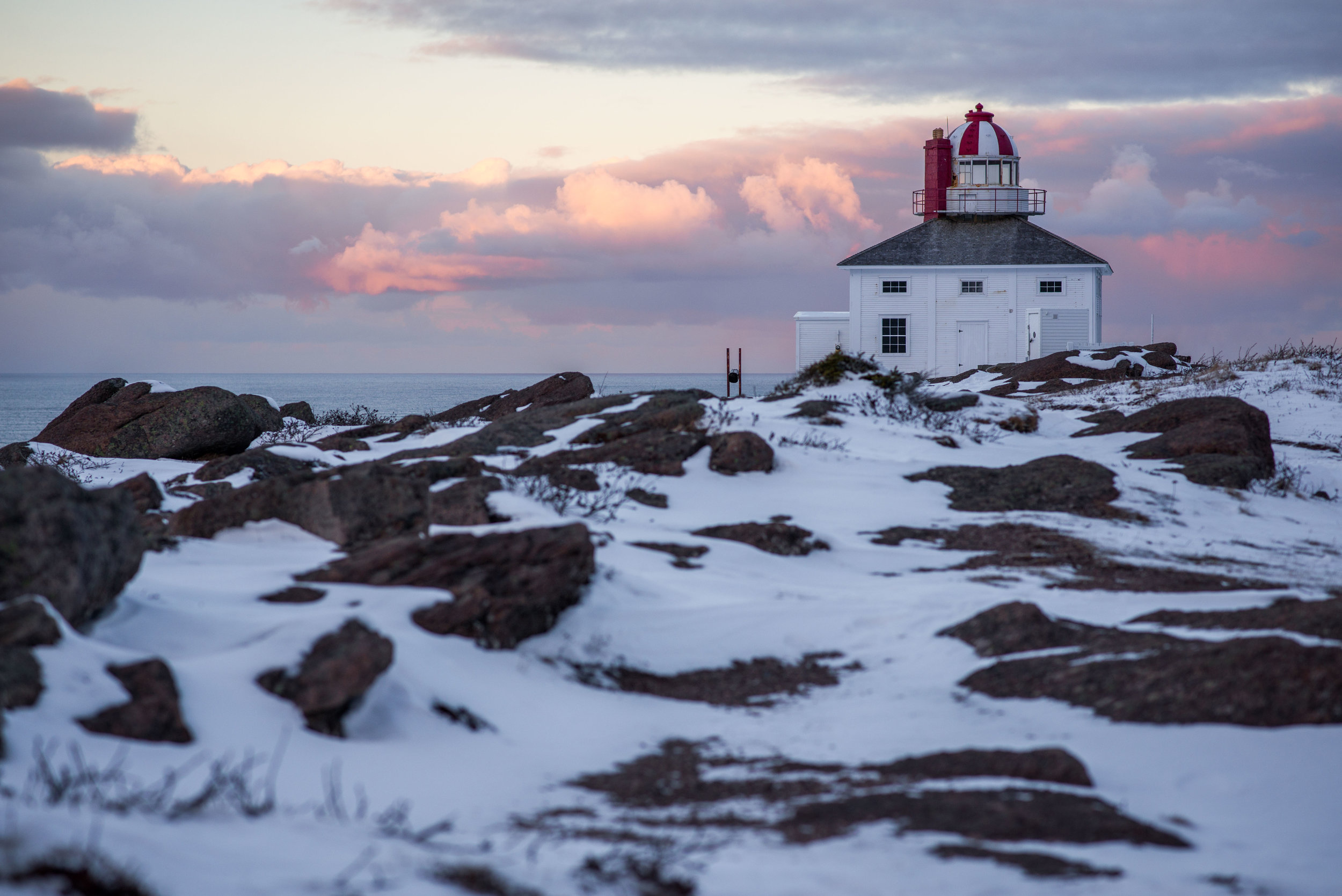 Jan 2 - Cape Spear-10.jpg