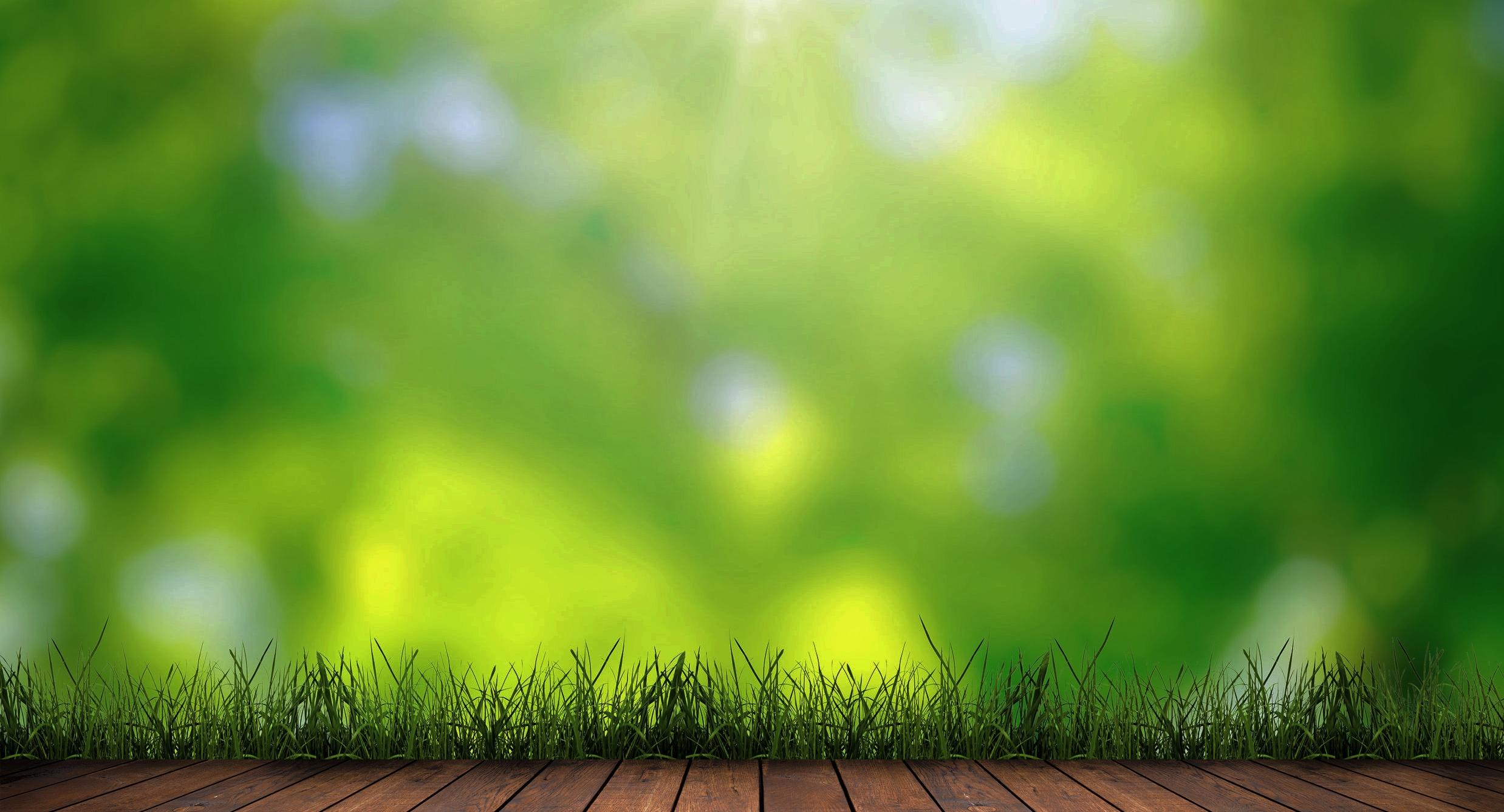 Envirotrol Pest Solutions