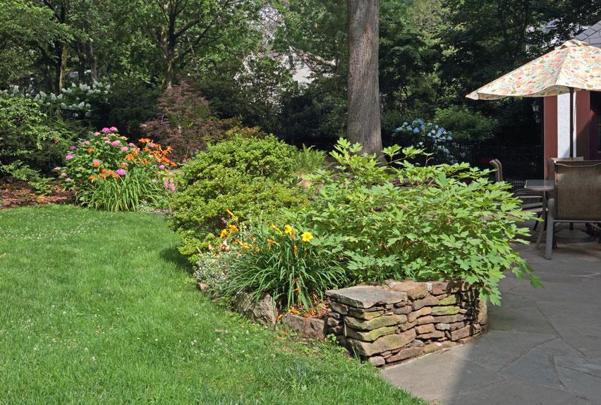 Larchmont-Residence-Backyard-Garden.jpg