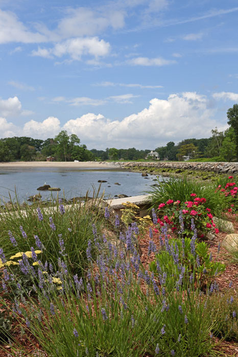 Salt-tolerant-garden-Mamaroneck-After-3.jpg