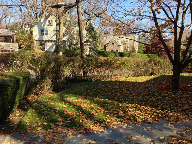 Brick-and-Boxwood-Garden-Wall-Before-2.jpg