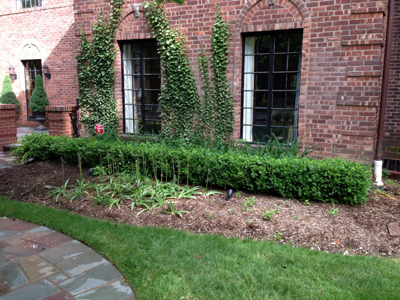 Brick-and-Boxwood-Garden-Wall-Before-3.jpg