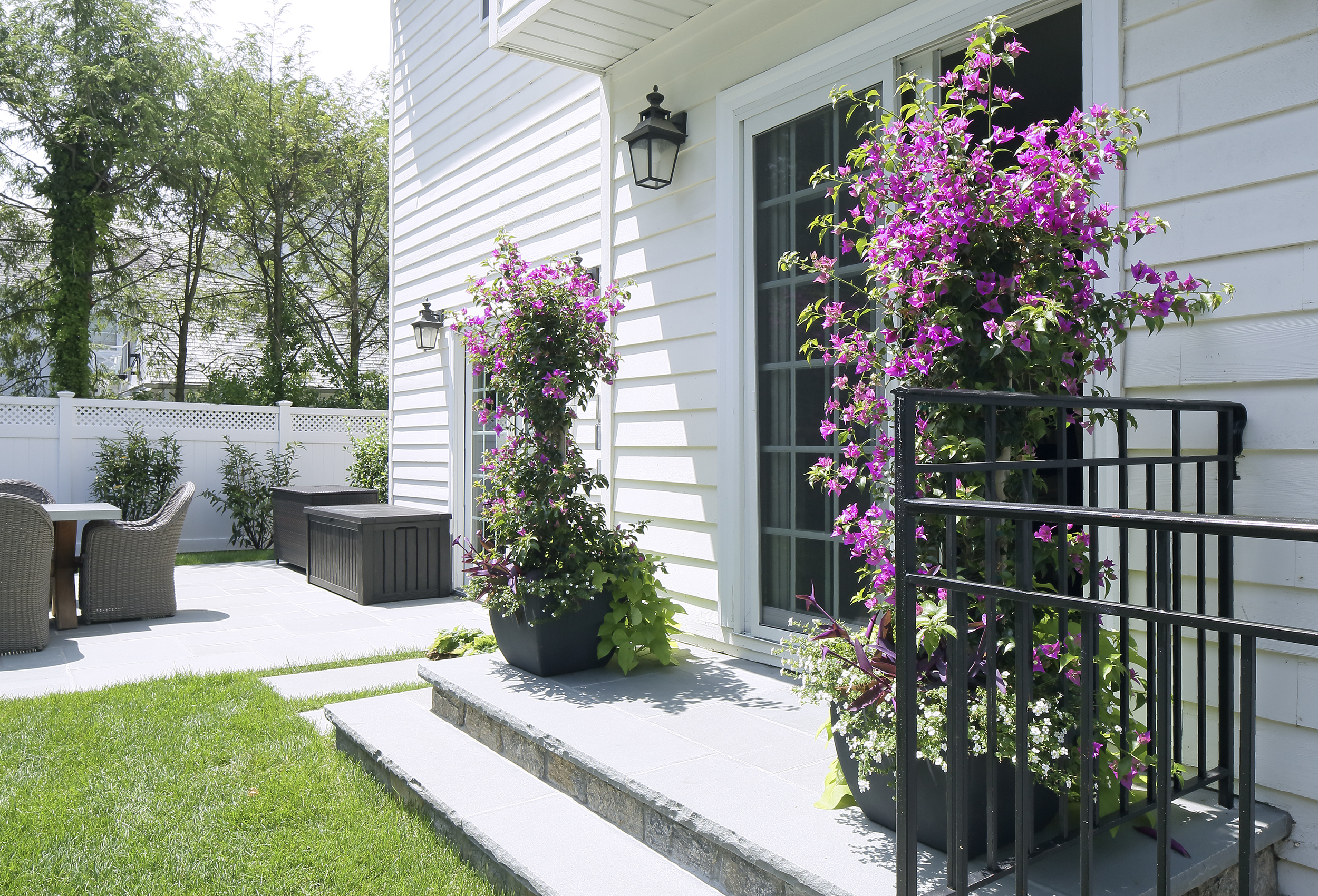 colorful-easy-container-plantings