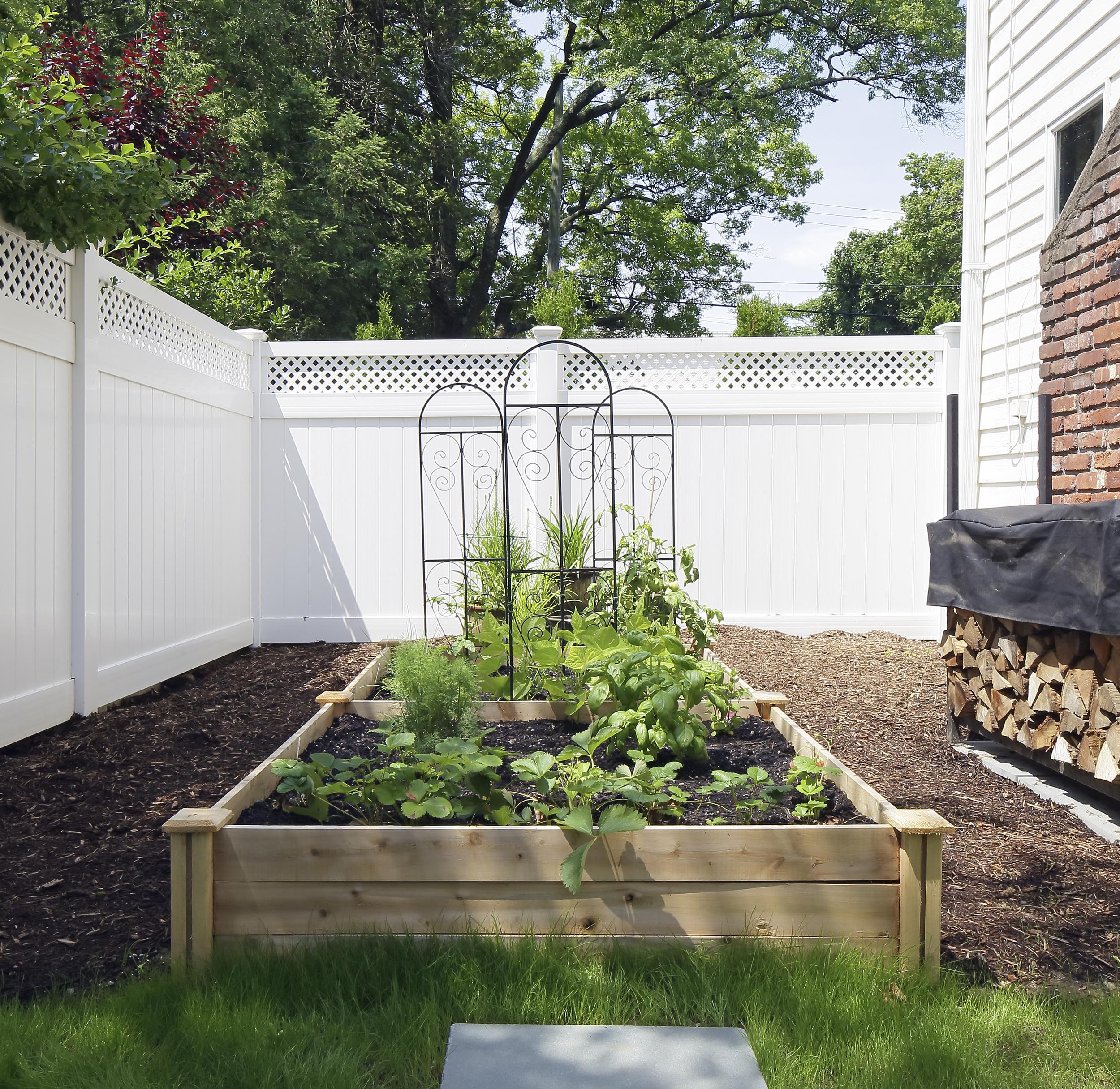 4-Growing-food-backyard-raised-beds.jpg