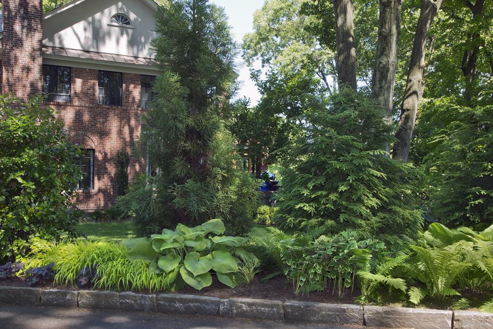 3-brick-boxwood-garden-year5.jpg
