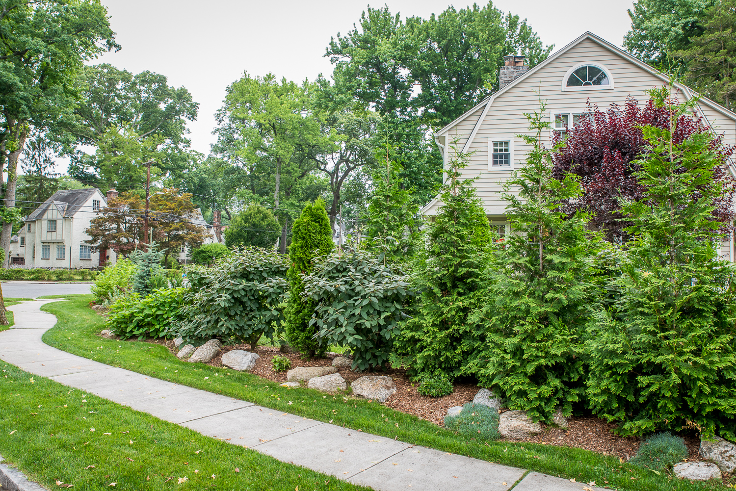 3-Mixed-evergreens-for-privacy.jpg