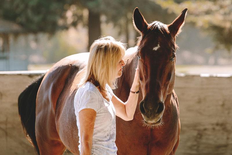 equus-12.jpg