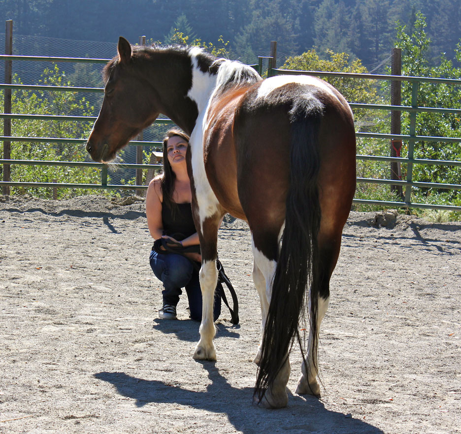 Marissa-and-horse.jpg