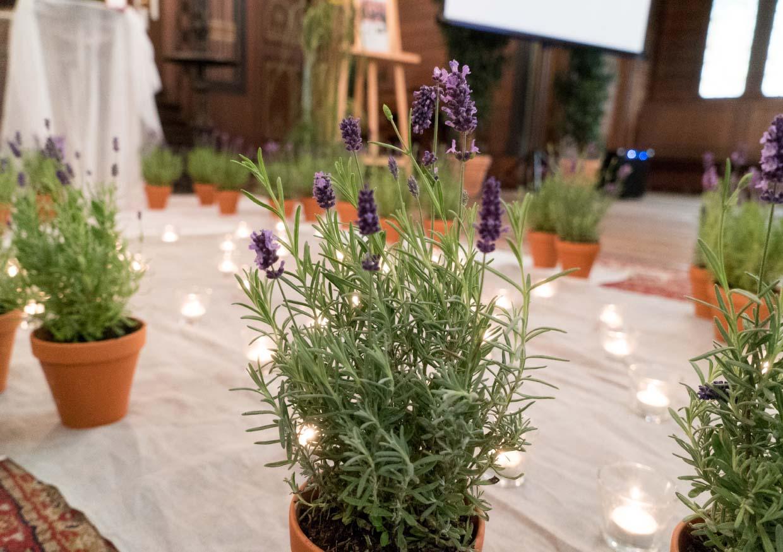 Lavendeldekoration einer Trauerfeier in Stahnsodor