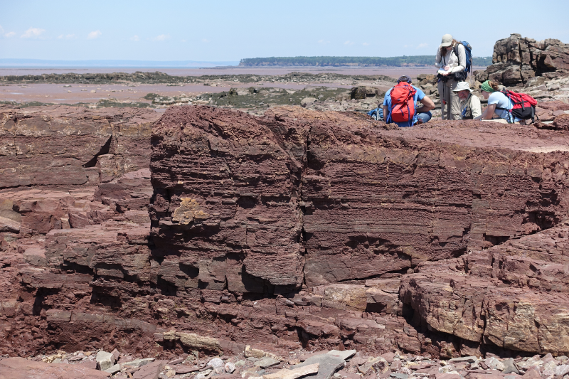 Cheverie terrestrial red beds