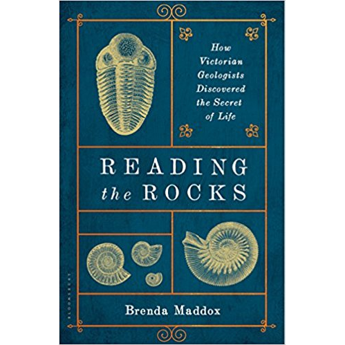 reading-rocks.png