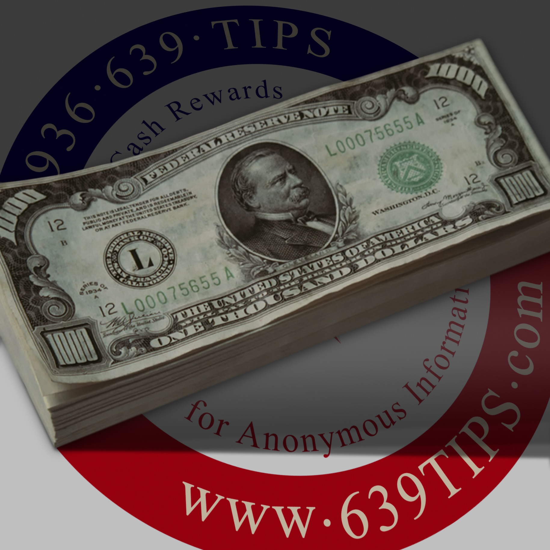 CS Facebook Profile Pic - 1000 Dollar Note Stack.jpg