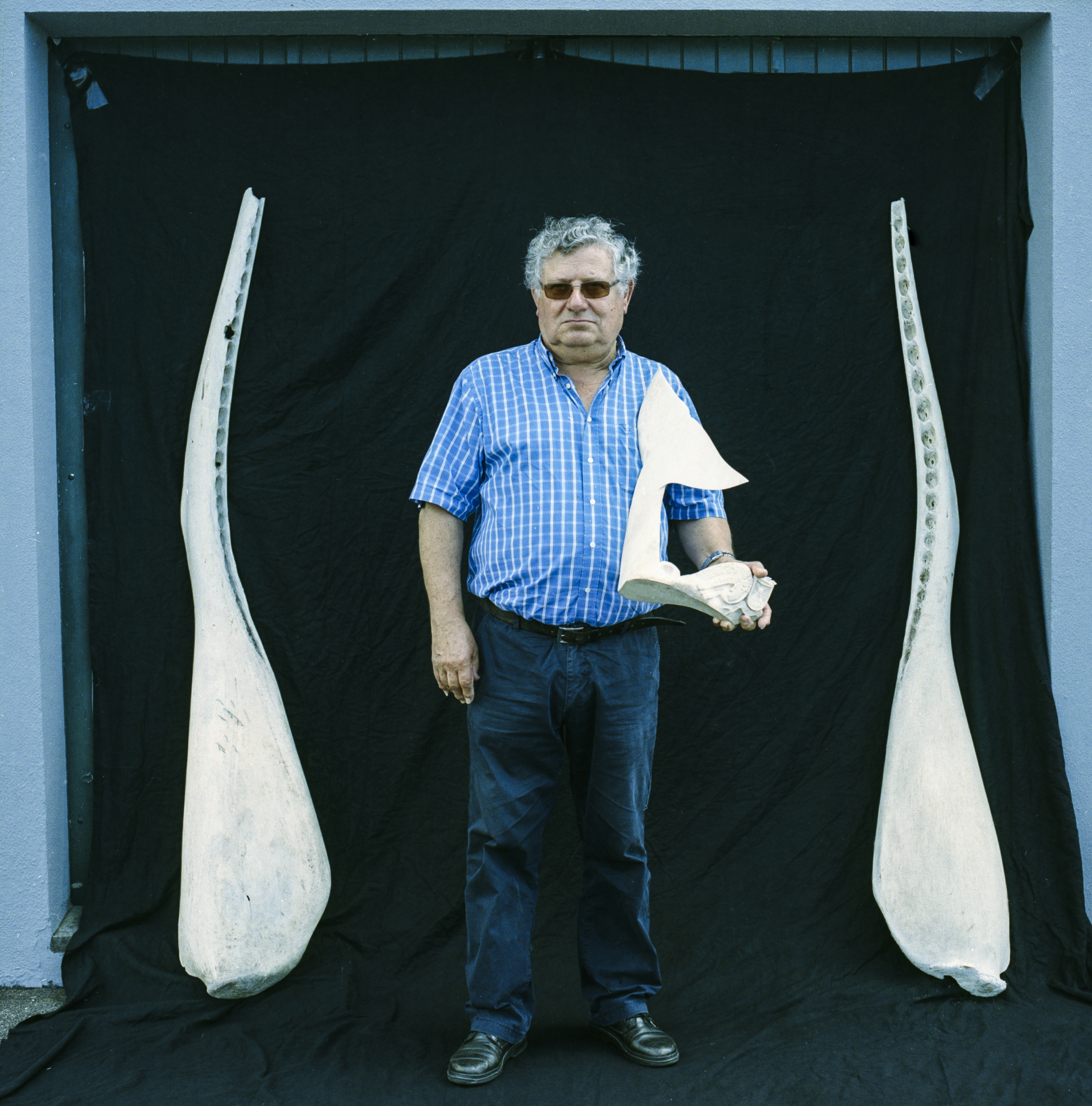 Manuel Alves Gonçalves, former banker and native of the island of Pico, has been promoting the lost art of Azorean  Scrimshaw, the carving of the jaw bone and teeth of the whale,for the last 26 years.