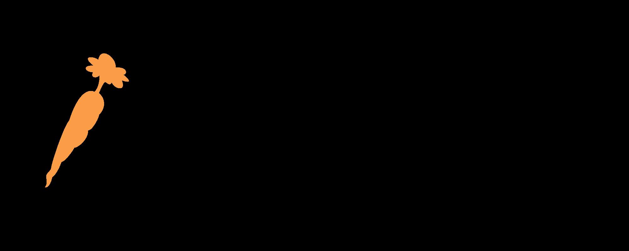 Healthy Start Diet logo