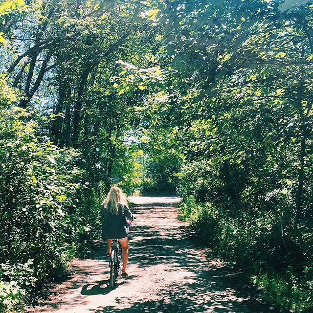 Summer-Bike-Rides-Instagram