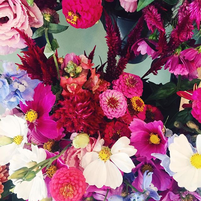 Simply Elegant Blog - Vermont Wild Flowers