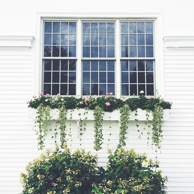 White Exterior and Flower Filled Window Boxes, Vermont.