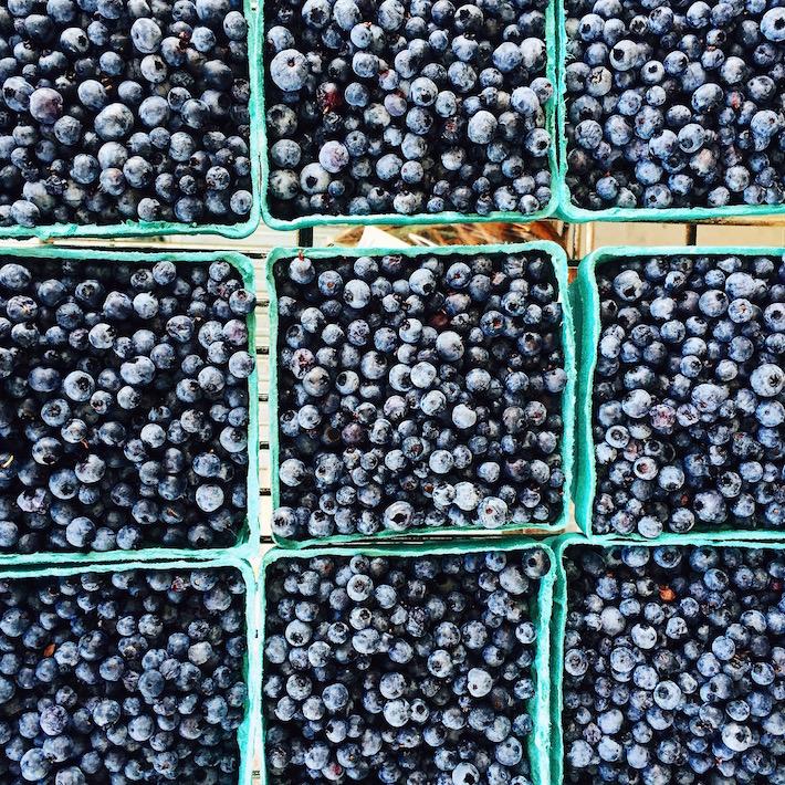 Maine Farmers Market Blueberries