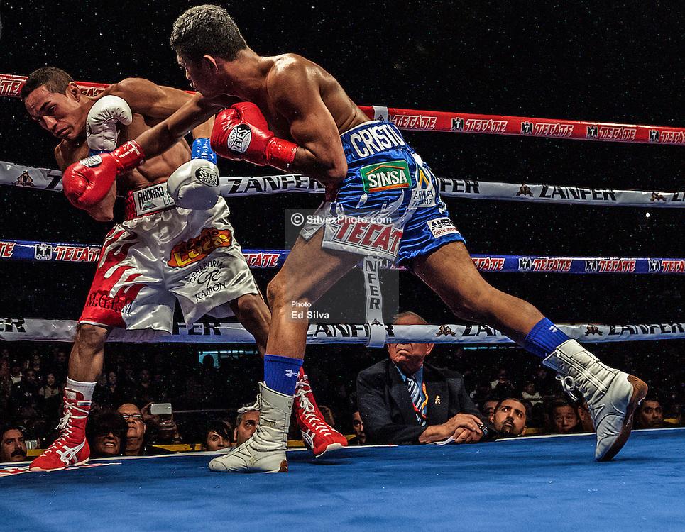 Roman Gonzalez lands a right hand on Juan Francisco Estrada. Photo: Ed Silva/Silvex Photo
