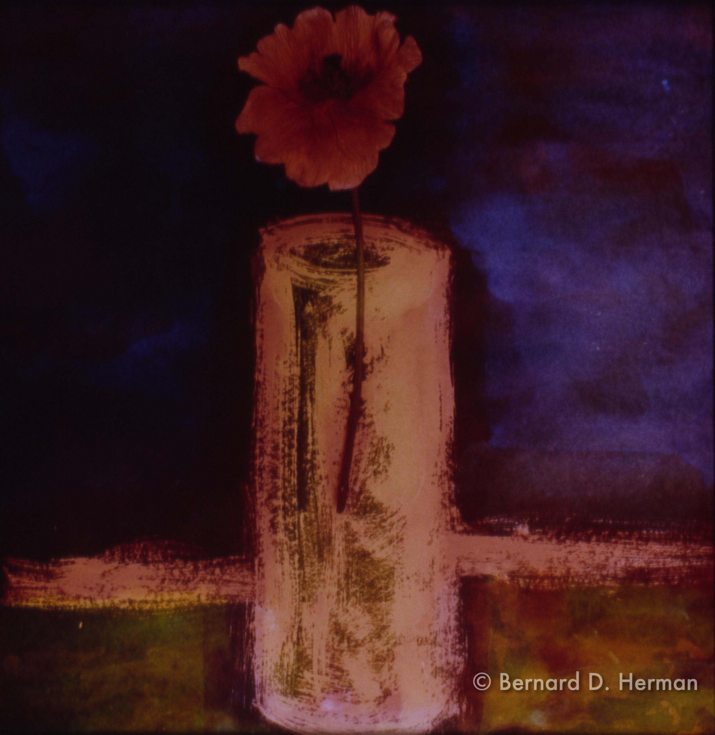 Vase of Poppy